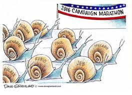 snailRace