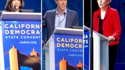 DemDaily: Courting California